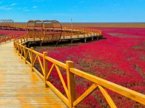 czerwona-plaża-5