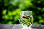 torebka po herbacie 1